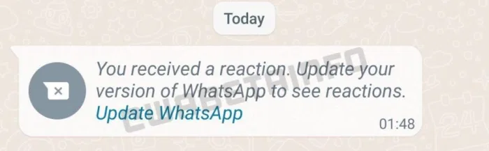 You received a reaction. Update your whatsapp version of Whatsapp to see reactions.